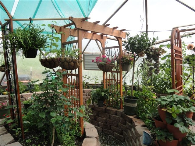 33 foot geodesic dome greenhouse