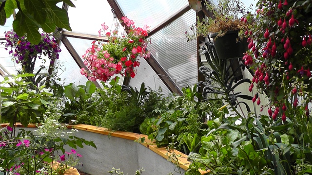 geodesic dome greenhouse 26