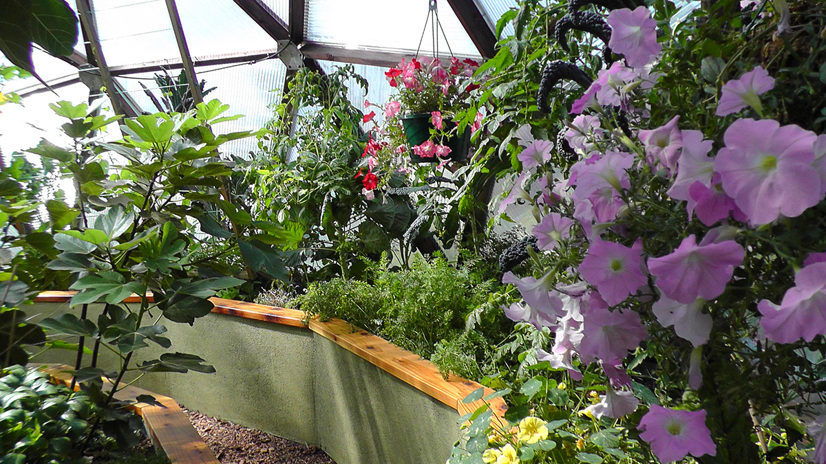 26 foot geodesic dome greenhouse