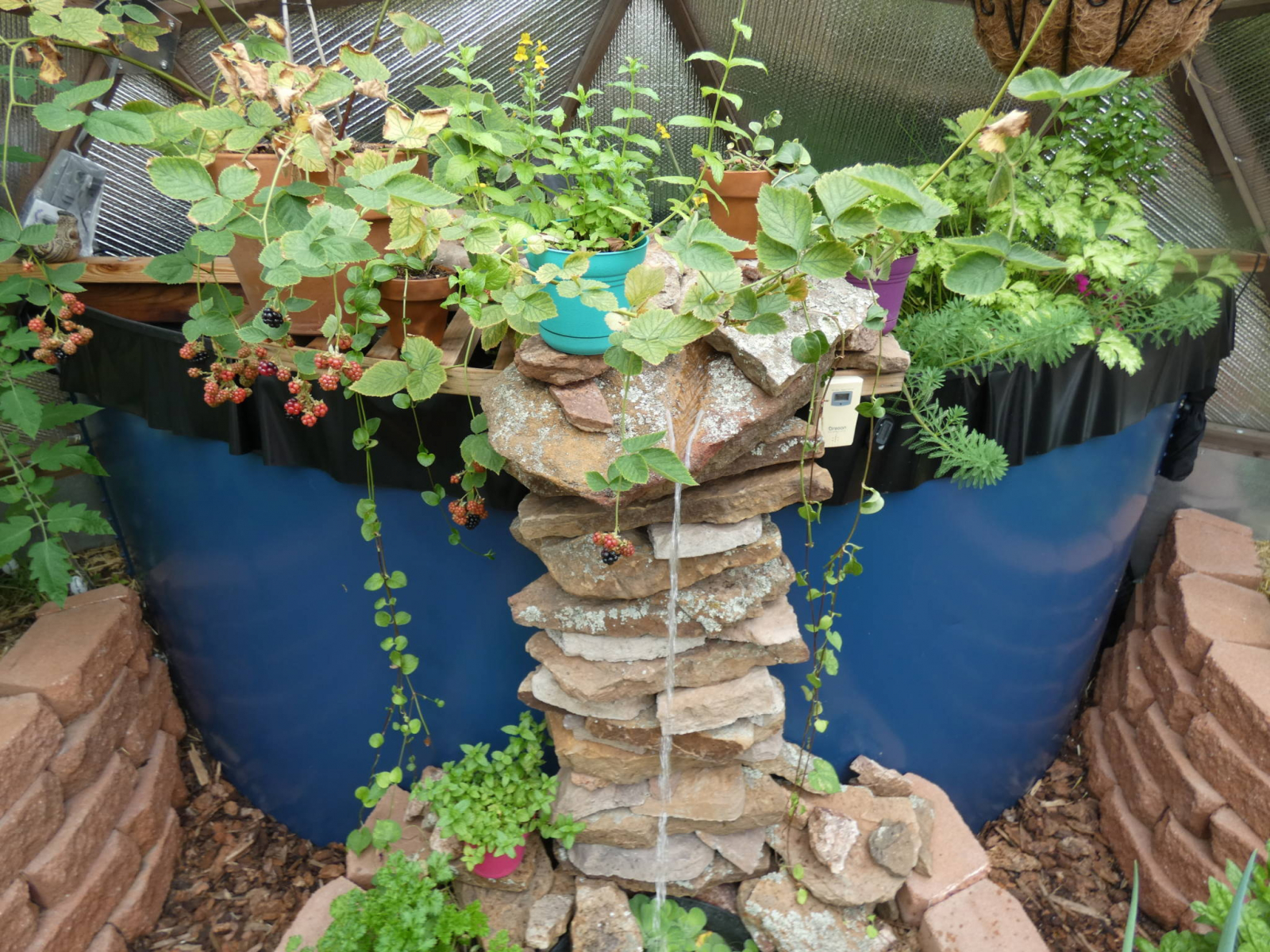 Custom Waterfall in Greenhouse