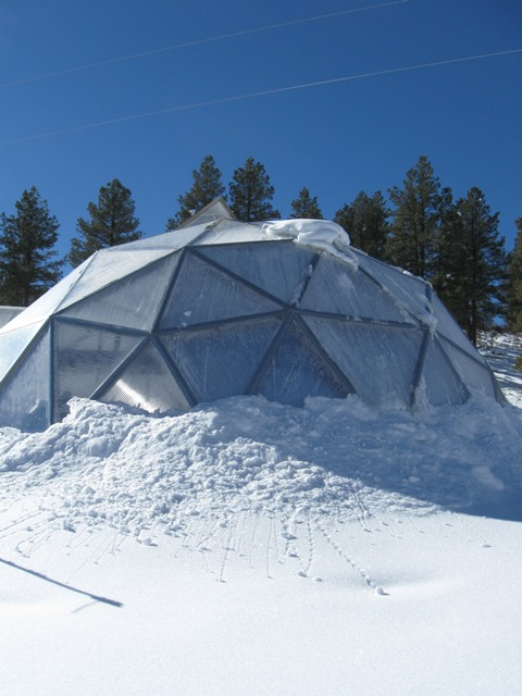 Winter greenhouse with snow