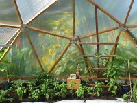 Polycarbonate on Geodesic Dome Greenhouse