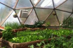 Sierra Food Hub Growing Dome Greenhouse