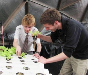 Aquaponics at School