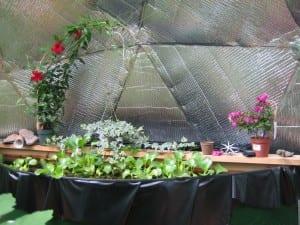 plants on beam above tank