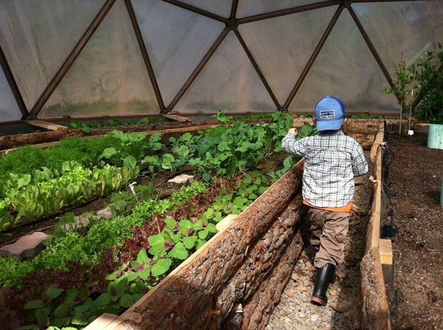 Kids gardening in geodesic greenhouse