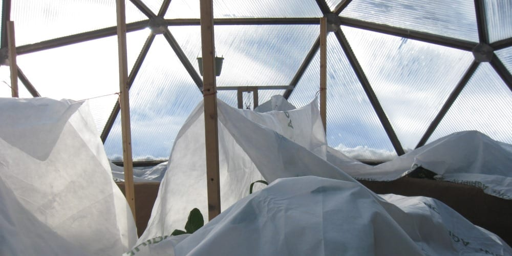 floating row cover in the greenhouse