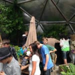 009-community-greenhouse-33-growingspaces