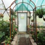017-home-greenhouse-kits-33-kleobold