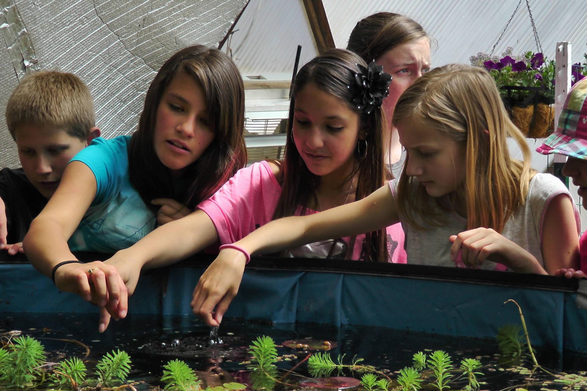 005-school-greenhouse-33-growingspaces