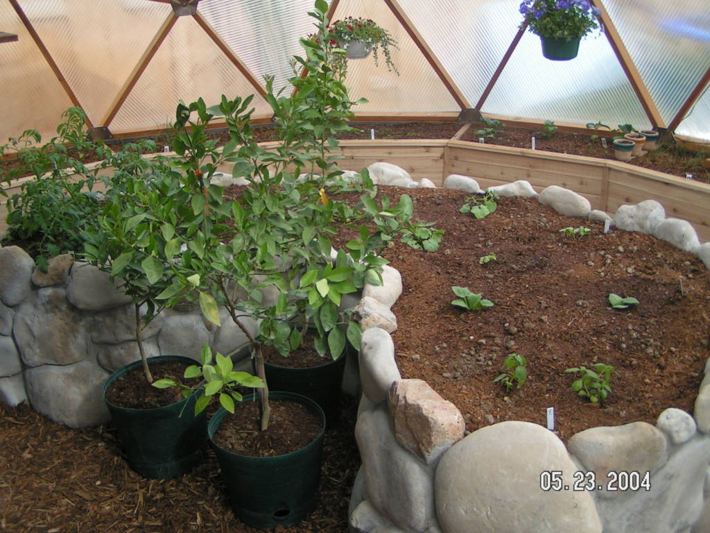 Rock and concrete center raised bed in geodesic dome greenhouse