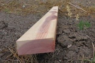 RedwoodBottomPlate1