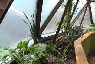 greenhouse-drip-edge-wall
