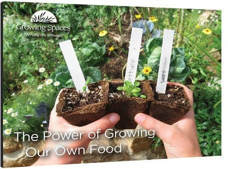 GS-ebook-power-of-growing-cover-weboptin