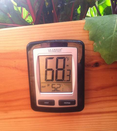 Growing Dome Thermometer
