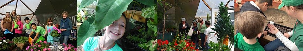 Educational greenhouses