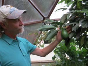 quality greenhouse
