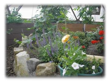 greenhouse-gardening-gardeningpic-photo