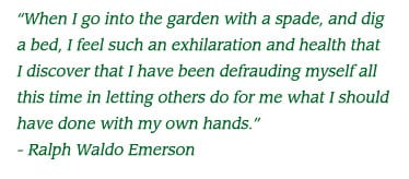 greenhouse gardens quote