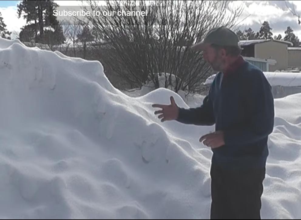 Winter Gardening Snow Accumulation