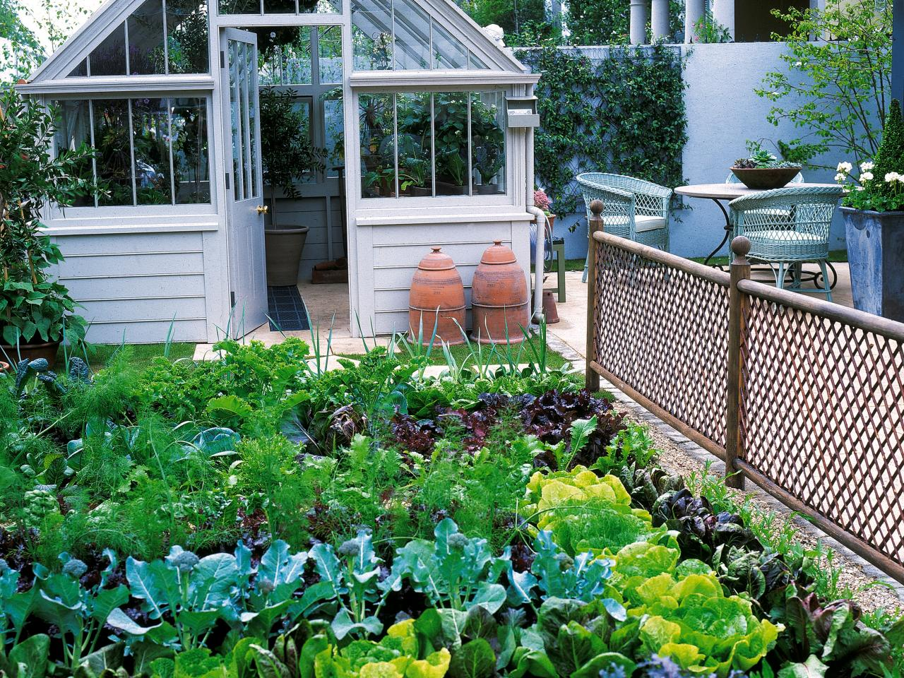 Growing your own vs shopping growing spaces for Idea of kitchen garden