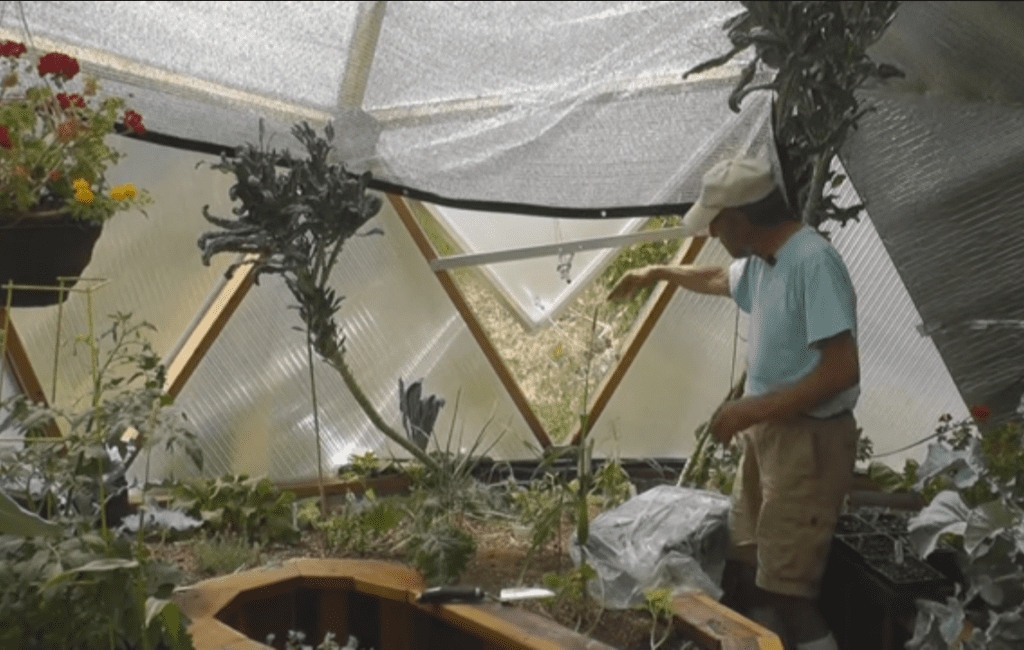keep your greenhouse cool