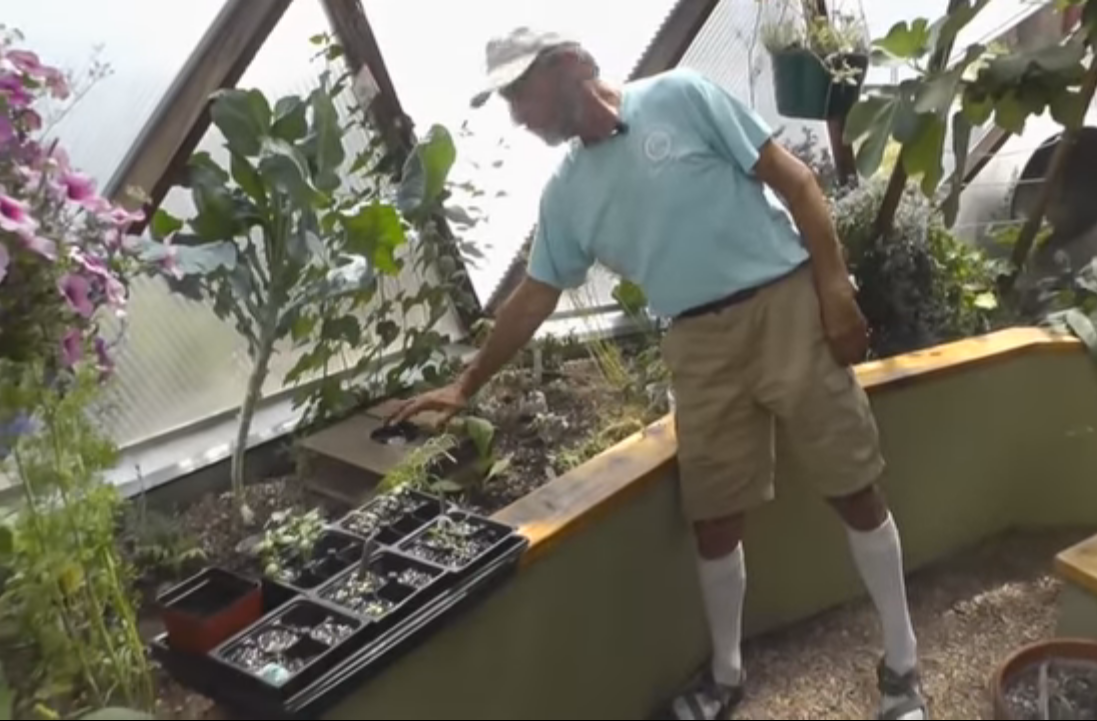 keep your greenhouse cool9