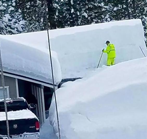 gardening in the snow