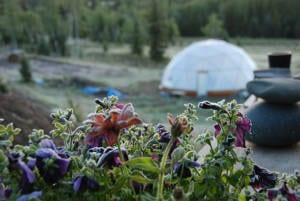 colorado greenhouse