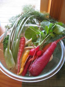 carrots from Growing Dome