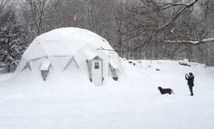 Growing Dome in snow with dog