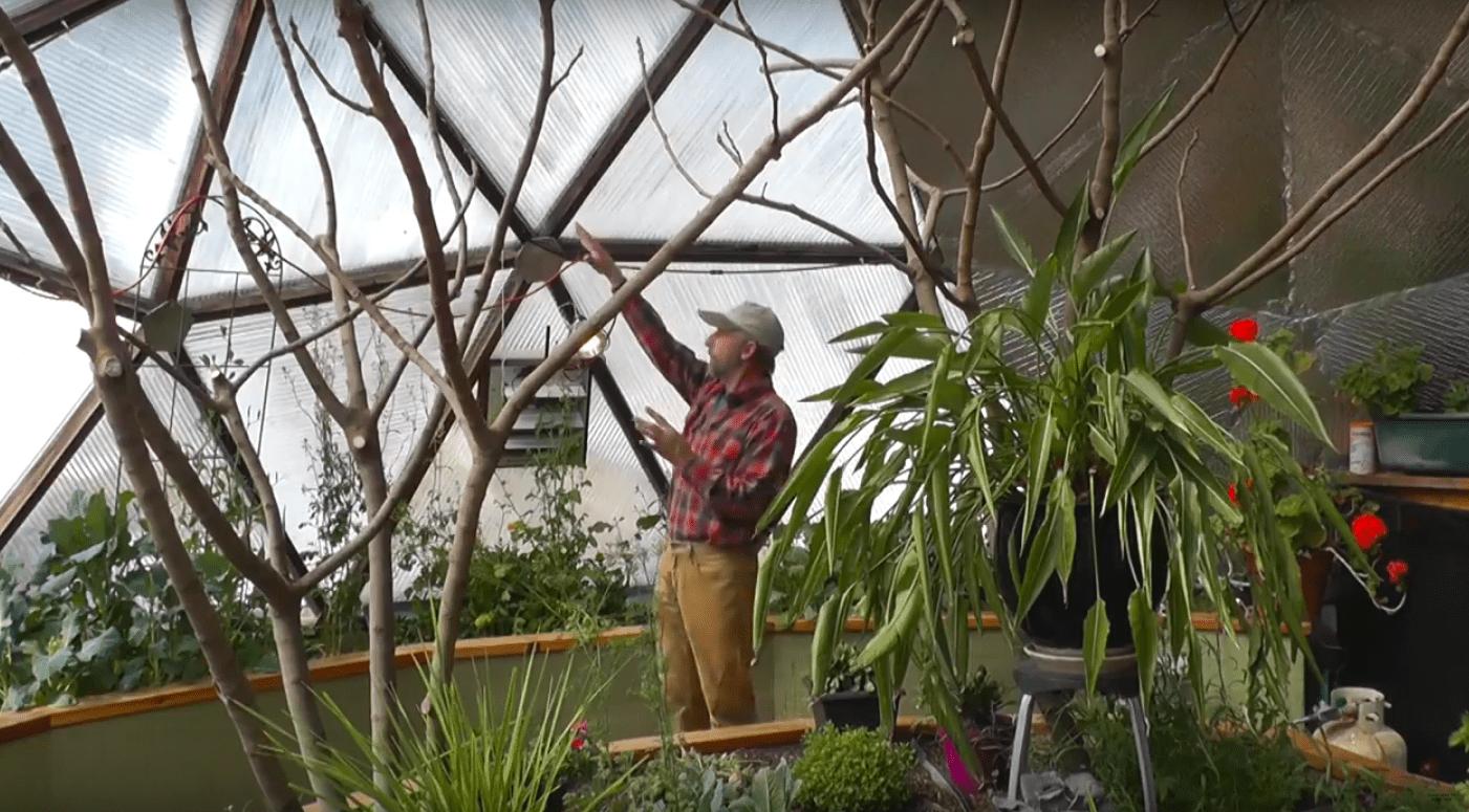 Revolutionizing the greenhouse industry.