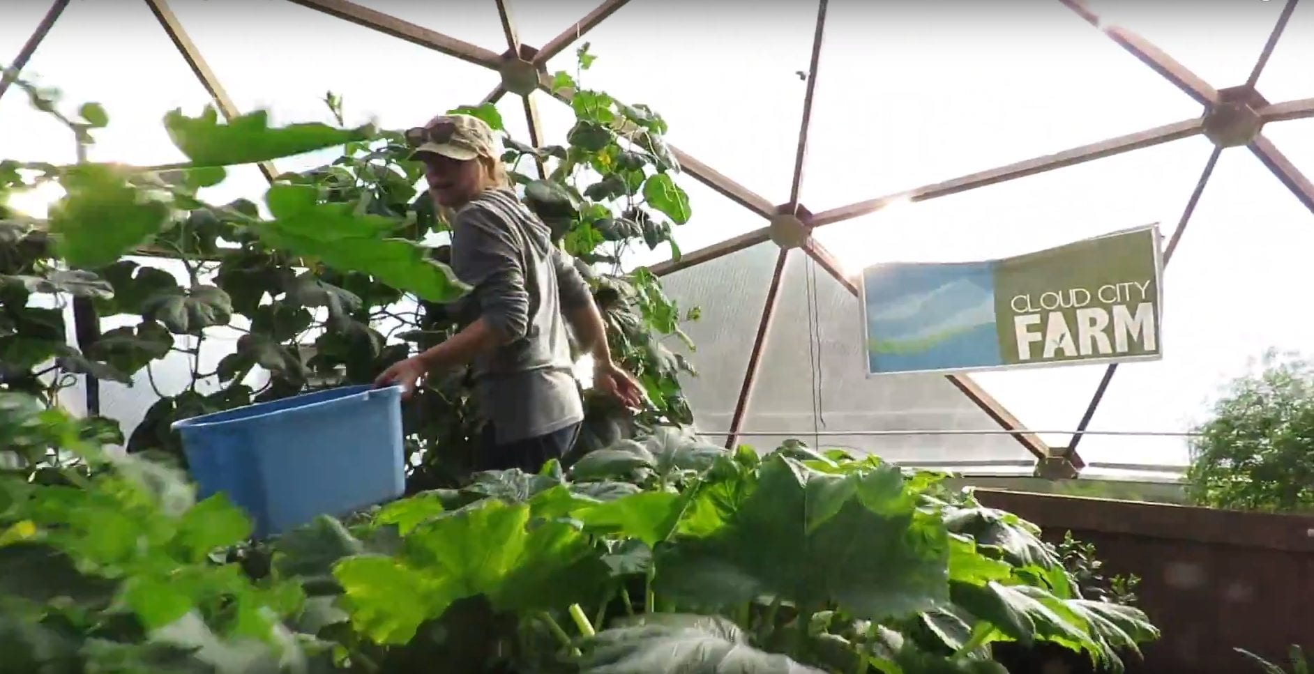 Cloud City Conservation Center Grow Dome from Growing Spaces