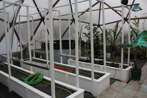 Aquaponics in Growing Dome Greenhouse in Sweden