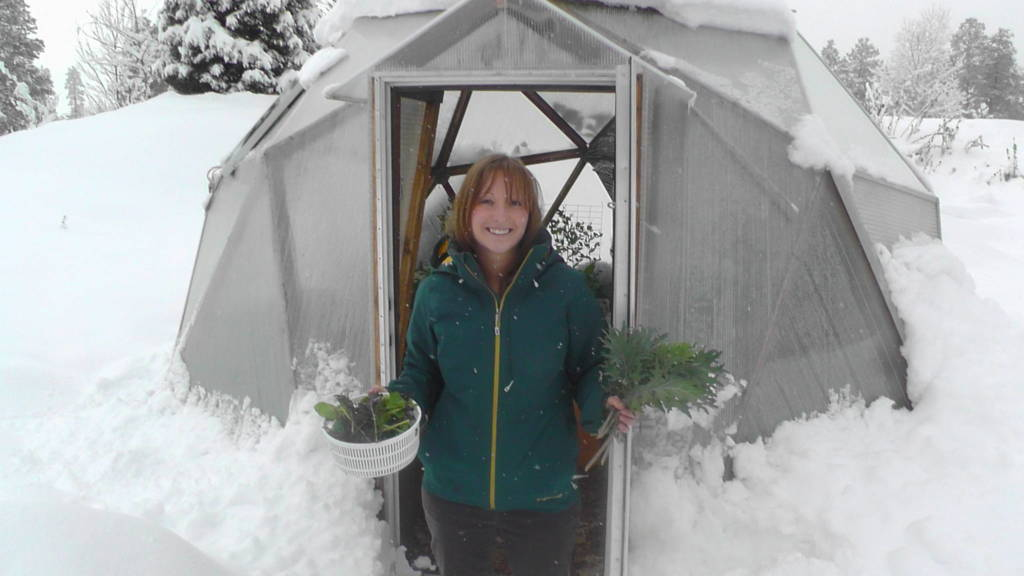 winter greenhouse in snow