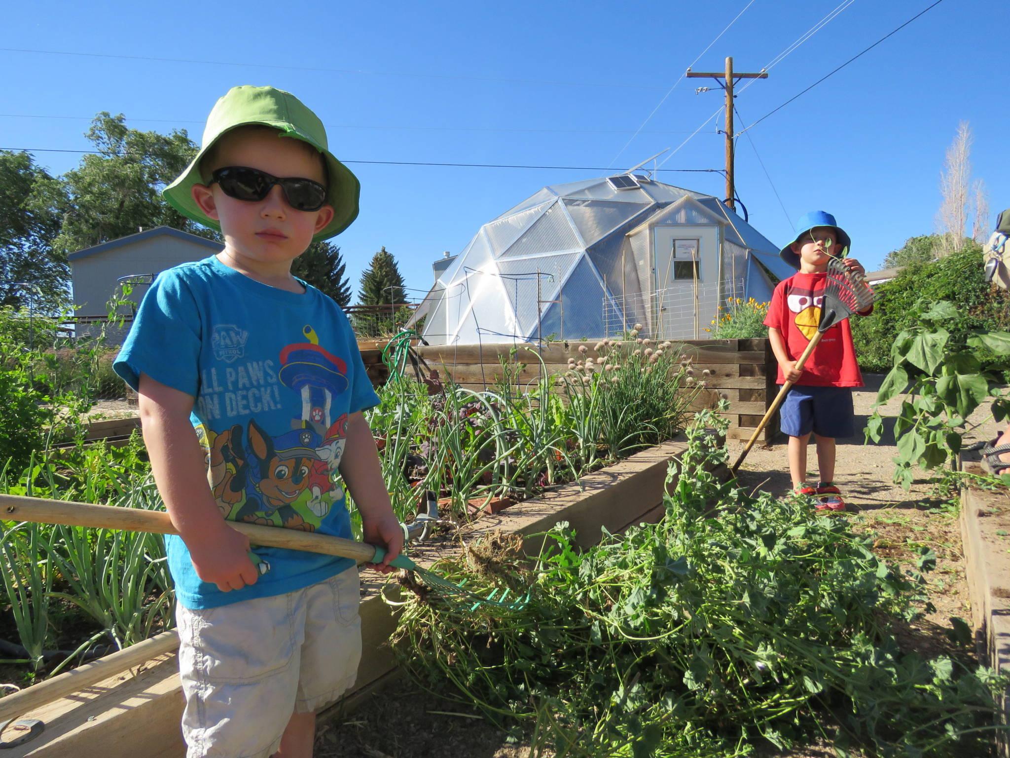 small-dome-in-community-garden