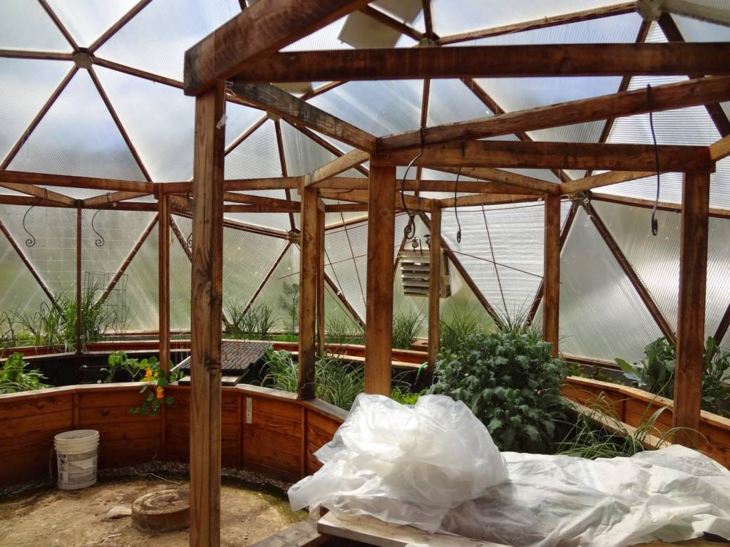 Trellis and planting beds in Growing Dome greenhouse