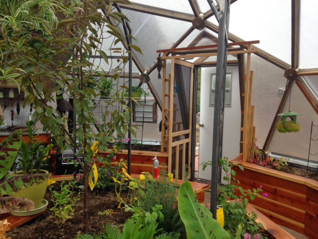 trellis and center planting bed in geodesic greenhouse