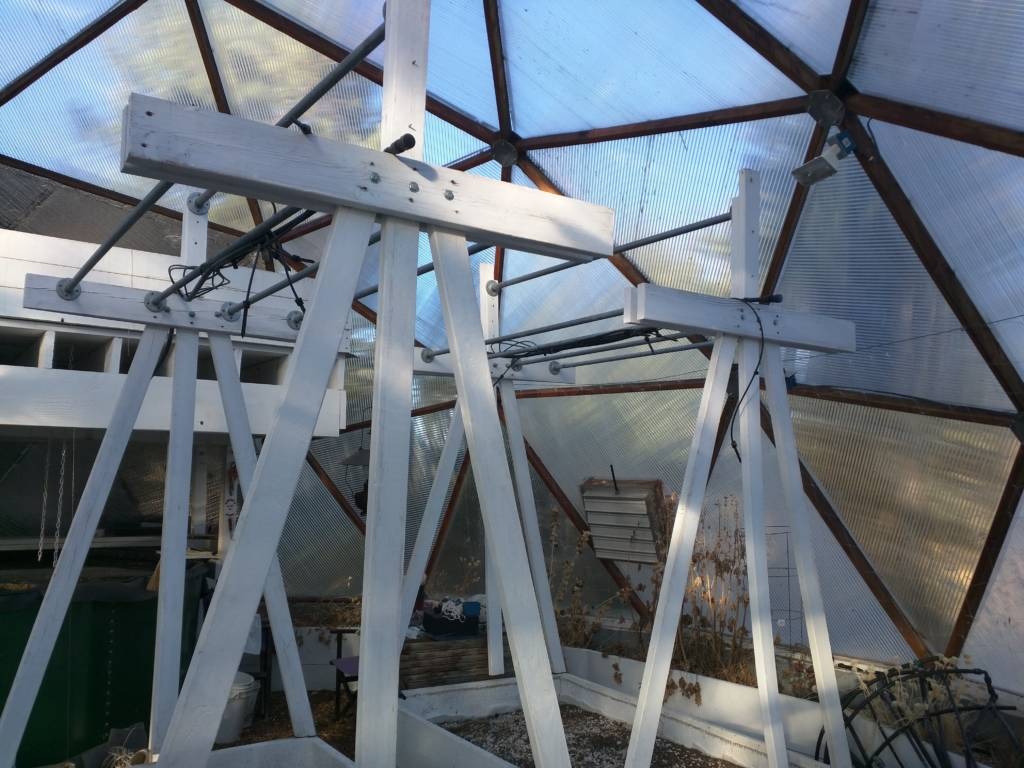 trellis for vines in Growing Dome greenhouse