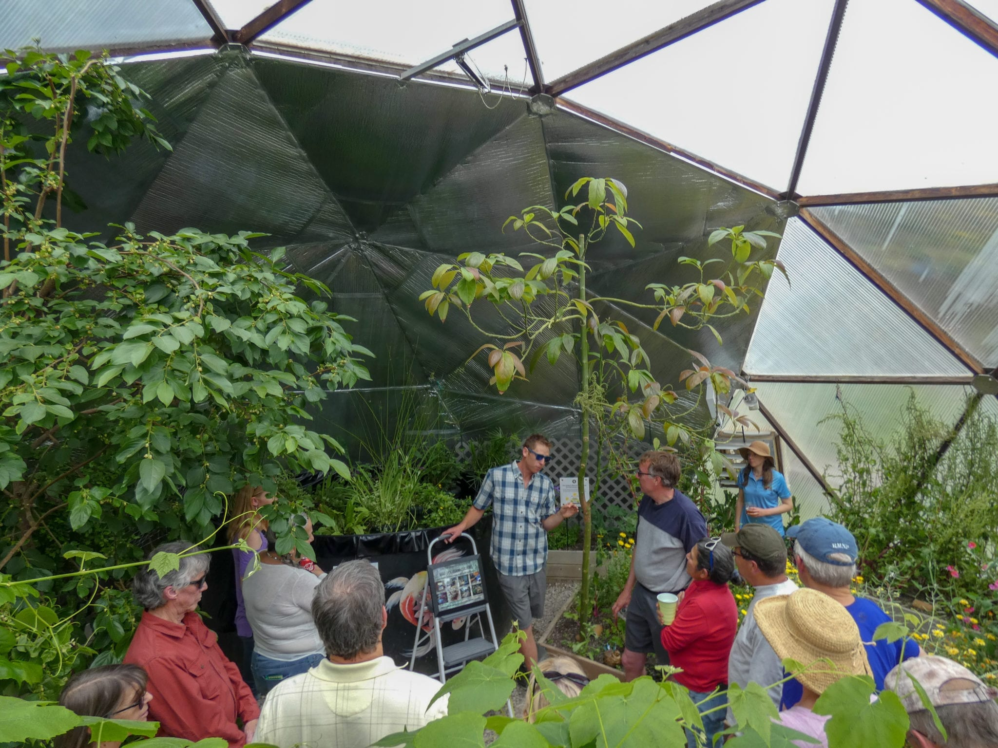people in a community greenhouse