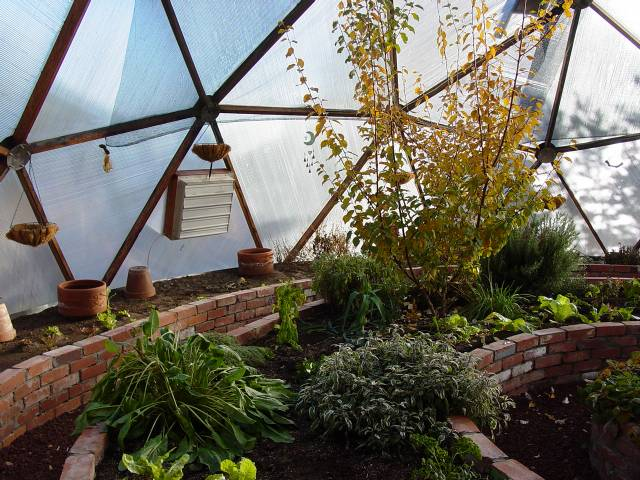 brick planting beds in geodesic dome greenhouse