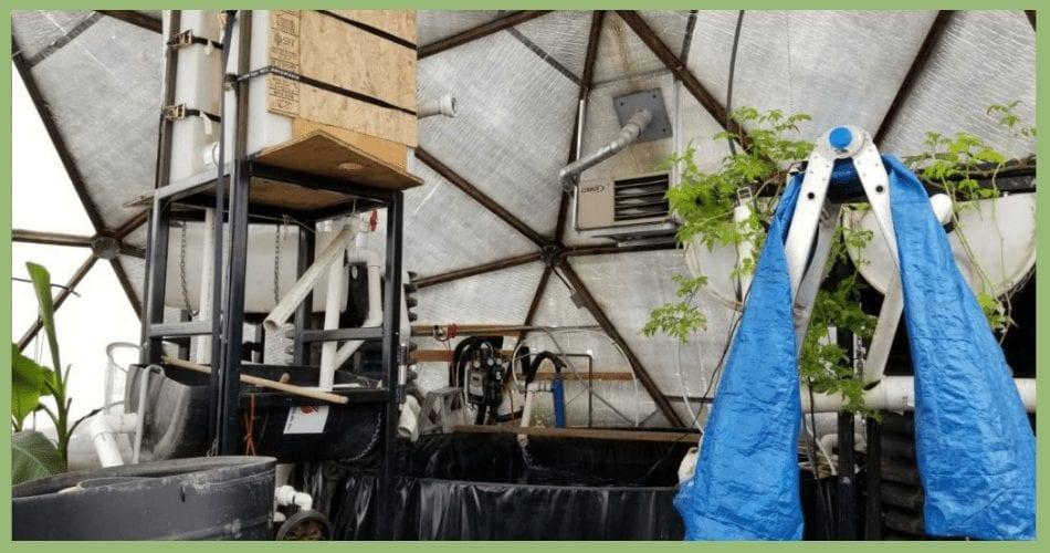 Aquaponics in Canadian Geodome Greenhouse