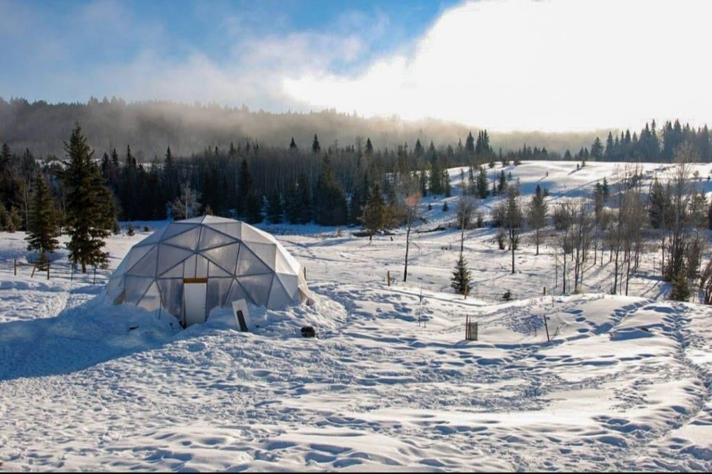 33-Winter-Greenhouse