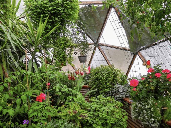 Inside a Solar Greenhouse Dome