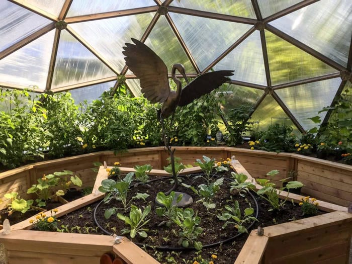 Star Shaped Bed inside Growing Dome Greenhouse