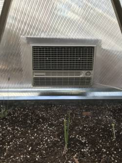 evaporative cooler to cool greenhouse