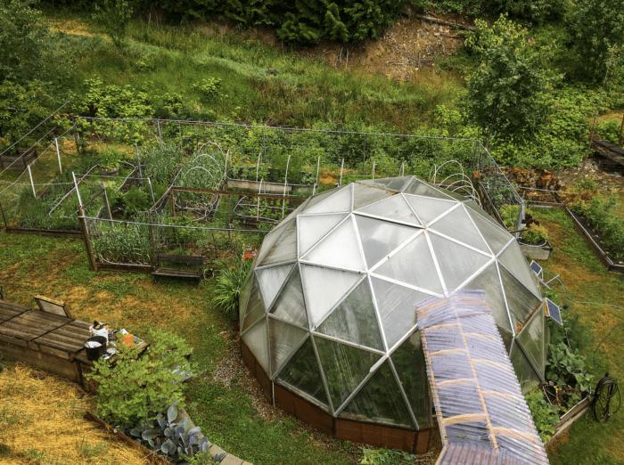 Nutrient Dense Greenhouse