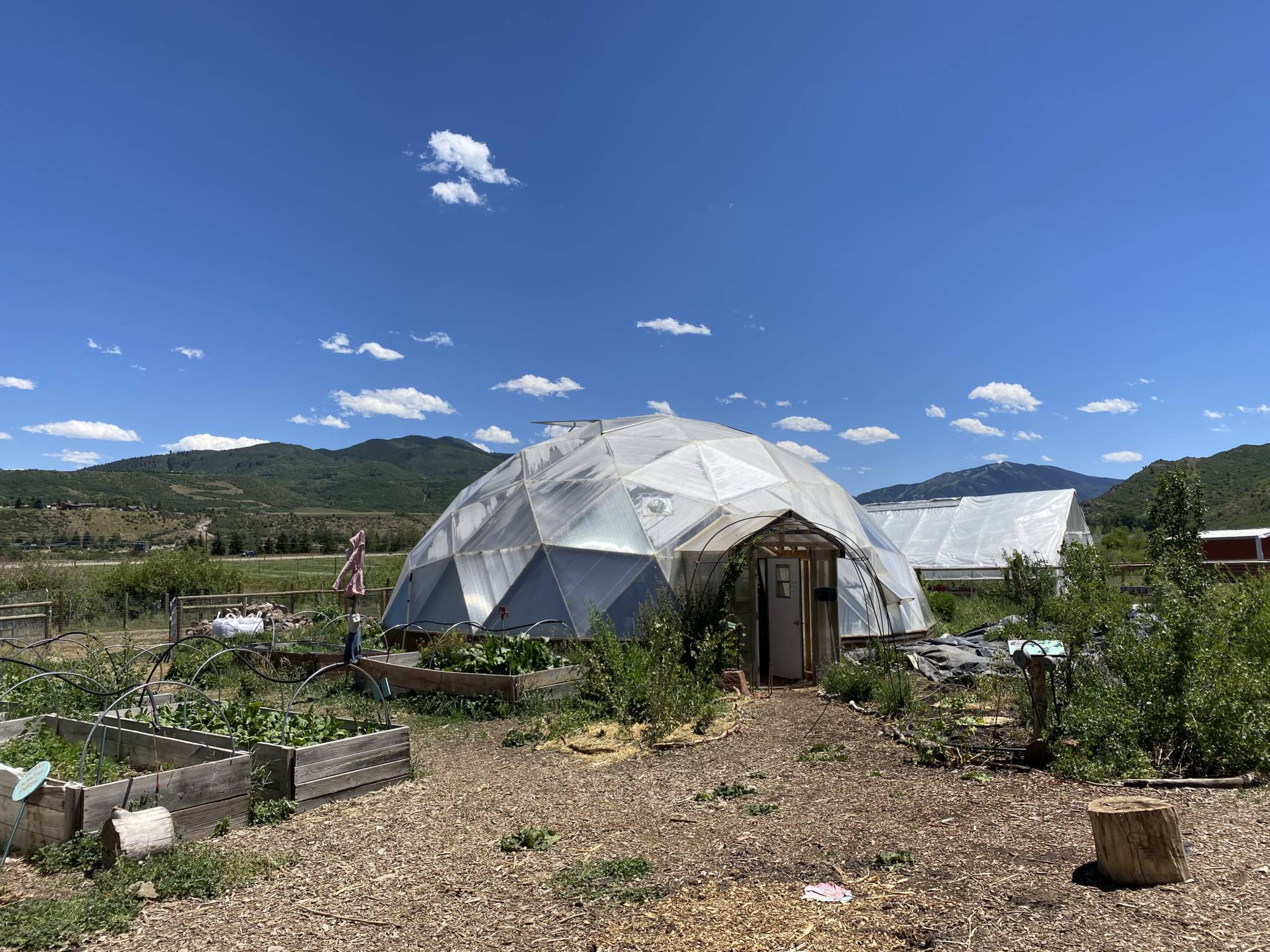 42' Growing Dome Geodesic Greenhouse at The Farm Collaborative in Aspen, CO