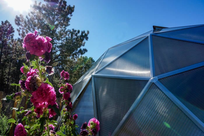 Solar Greenhouse closeup with flowers