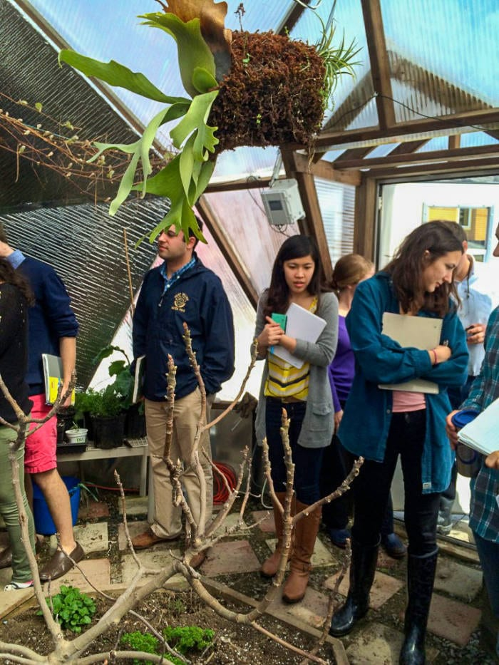 college class in the sustainable greenhouse